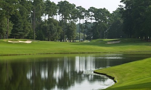 golf course homes for sale greenville spartanburg
